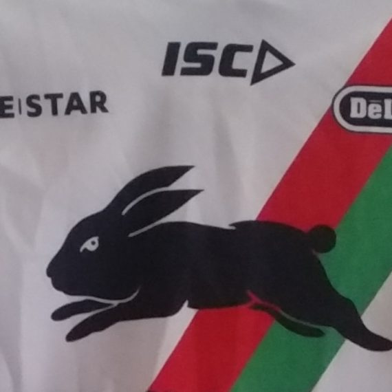 South Sydney Rabbitohs 2013 training jersey